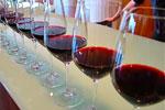 Weinverkostungskurse Weinverkostung Sevilla