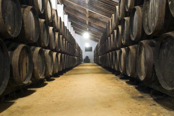 Visita a bodegas de Sevilla